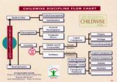 On Becoming Childwise Discipline Flow Chart - Laminated